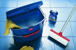 Уборка в доме - как борьба с мошками