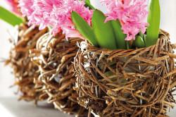 Цветы в оригинальных горшках